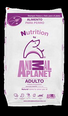 alimento para perros adulto razas pequeñas